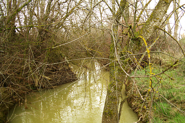 Río Flumen tras la tormenta