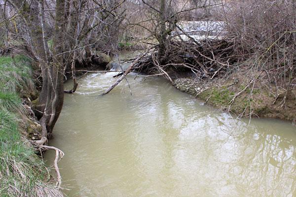 Cauce del Flumen cerca de Huesca