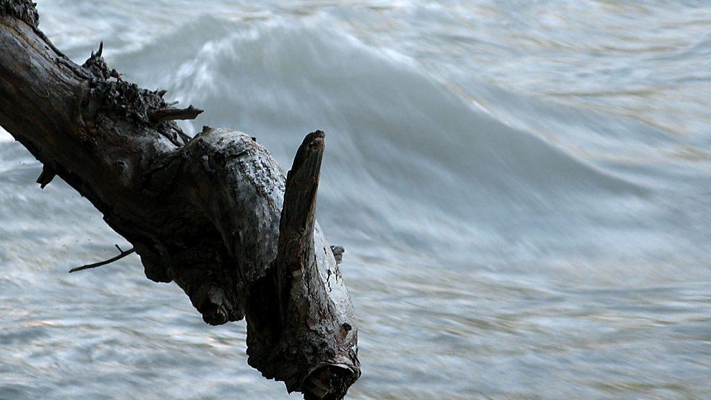 Río Ara. Broto