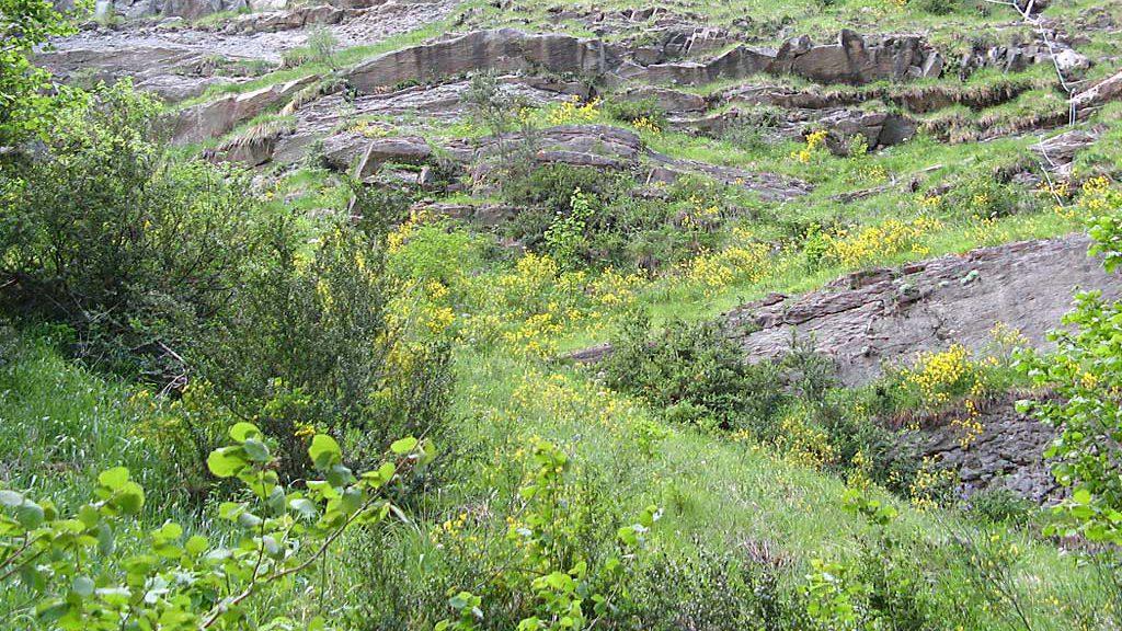Entorno Cascada de Sorrosal