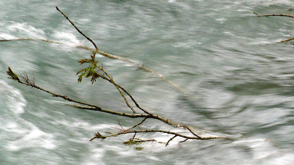 Río Arazas crecido por el deshielo (Ordesa)