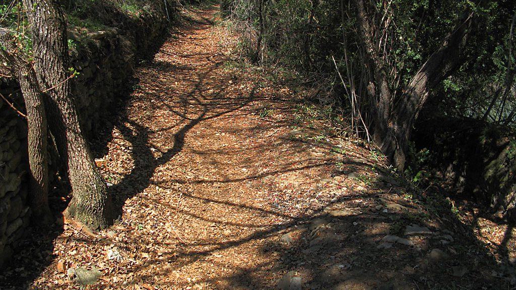 Camino hacia la Gorga del Cura