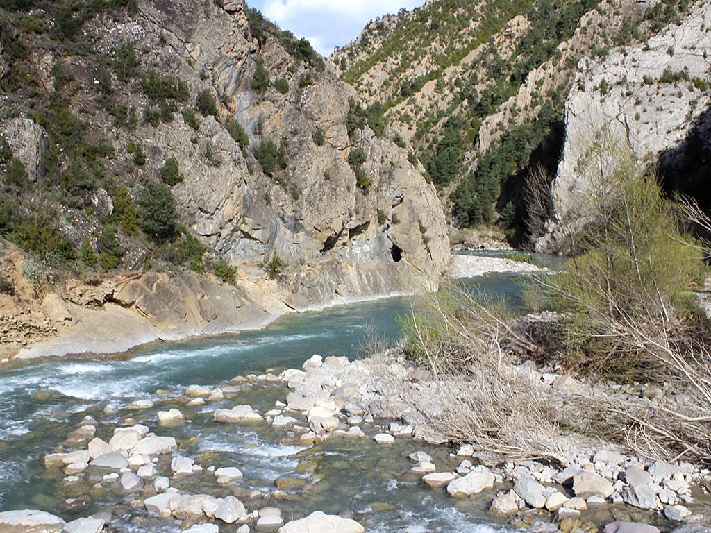 Río Ara desde Jánovas