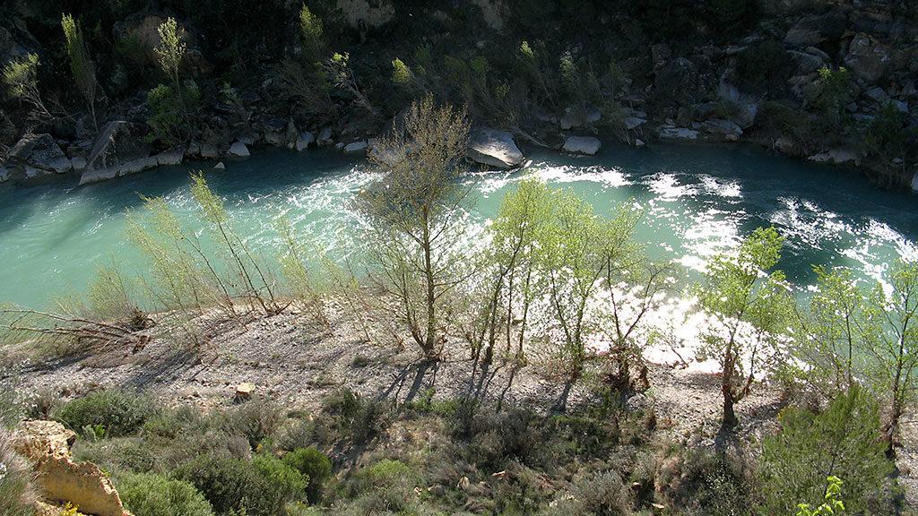 Río Gállego junto al puente de Murillo