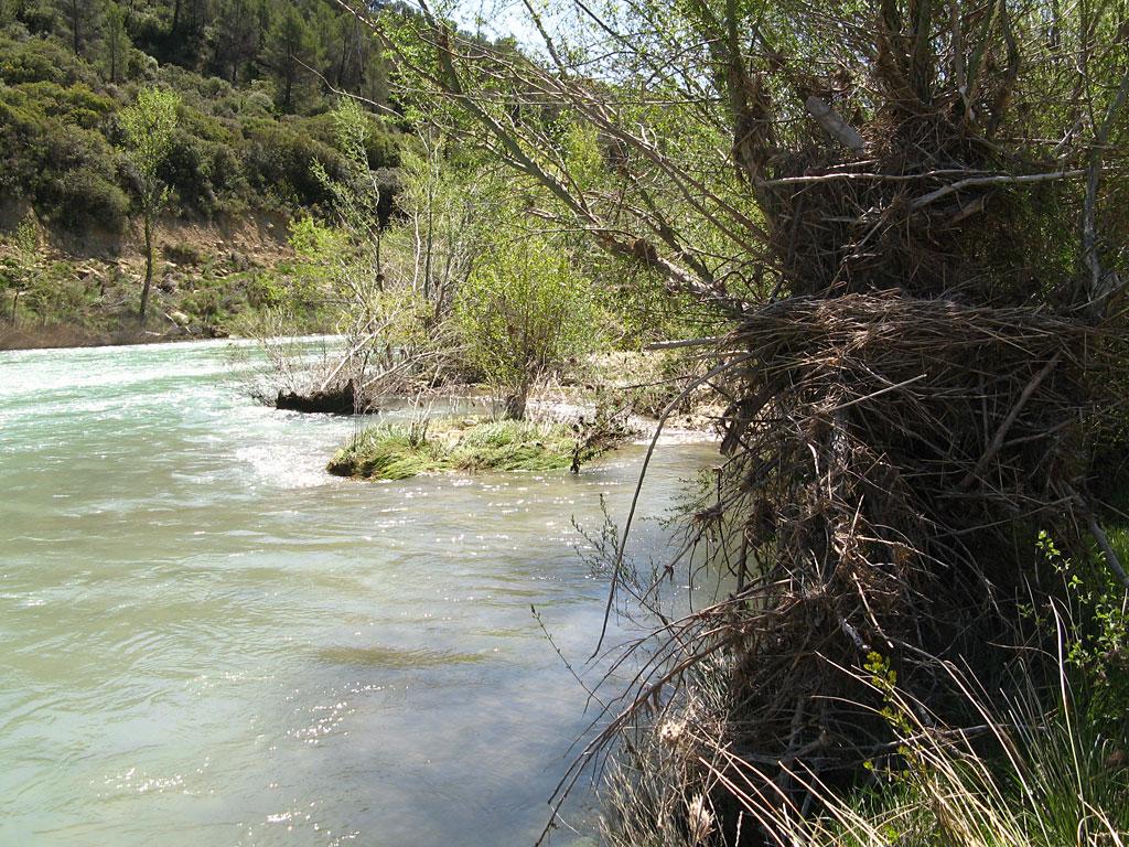 Hacia el puente de Santolaria de Gállego