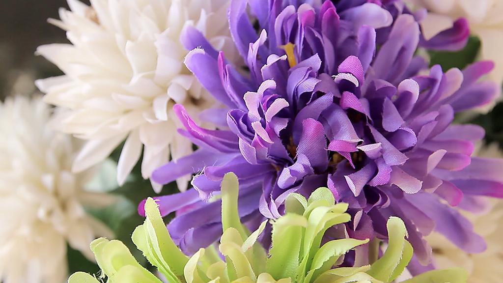 Flores en el cementerio de Huesca