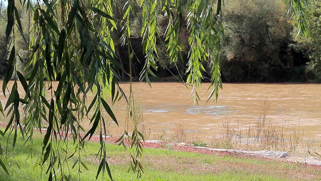 Río Cinca en Fraga